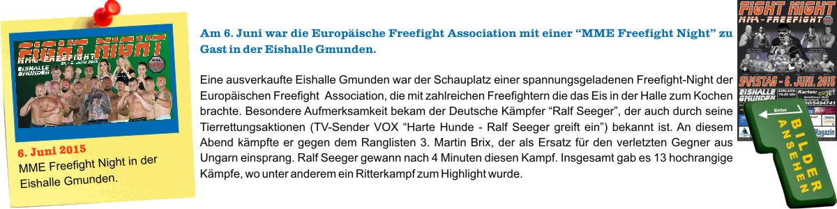 MME Fightnight 2015 in Gmunden